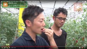 ぶどう味のトマトを試食