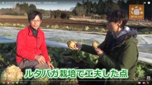 種を蒔く時期と程よい寒さ対策がポイント