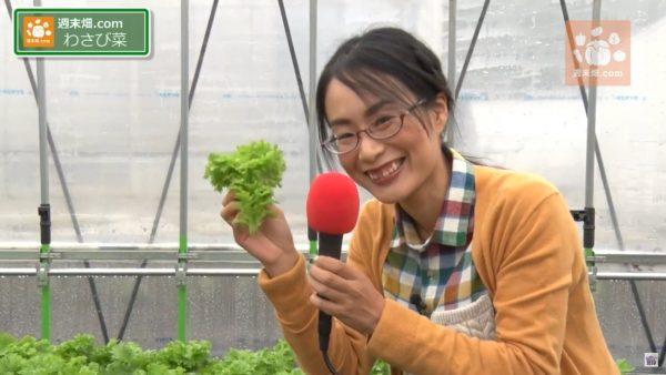 柴海さんの野菜実食