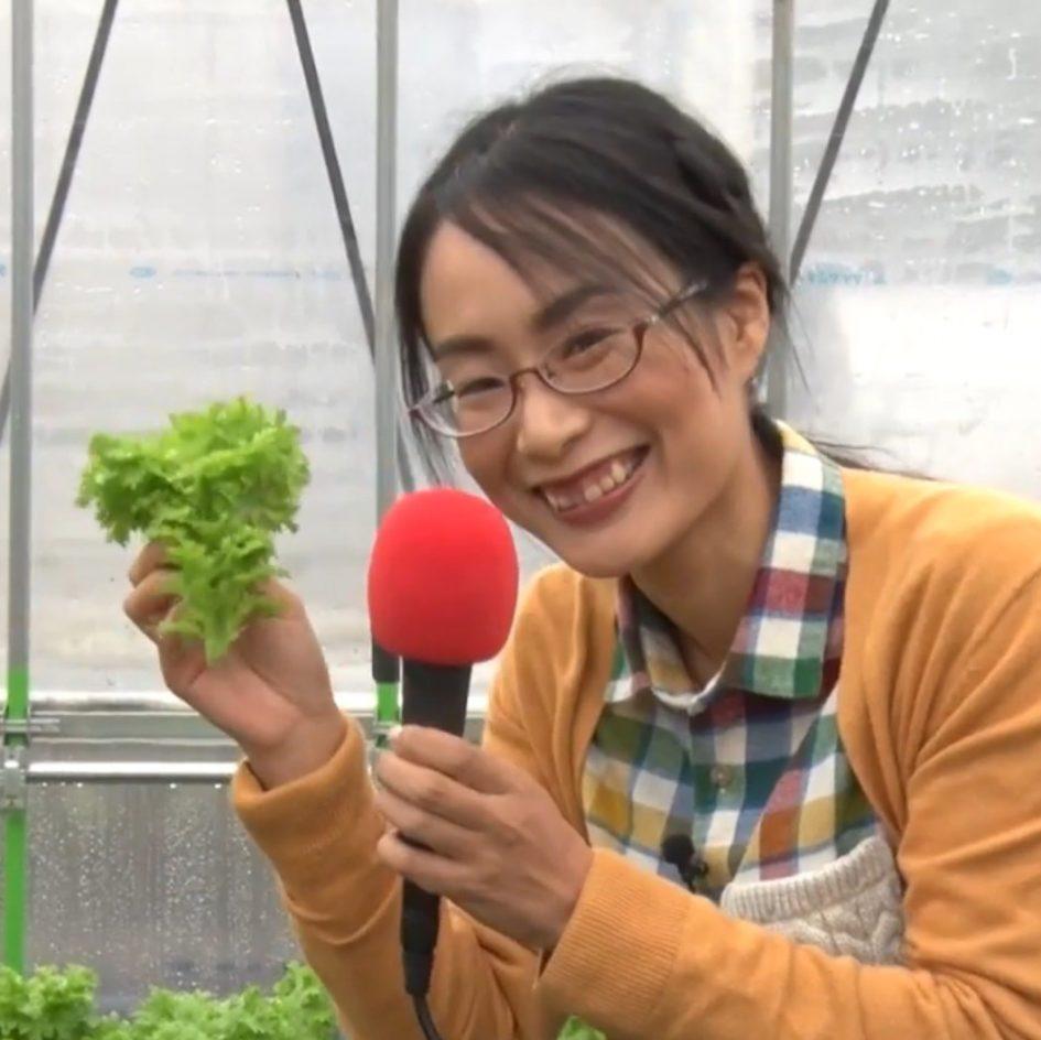 柴海農園の野菜