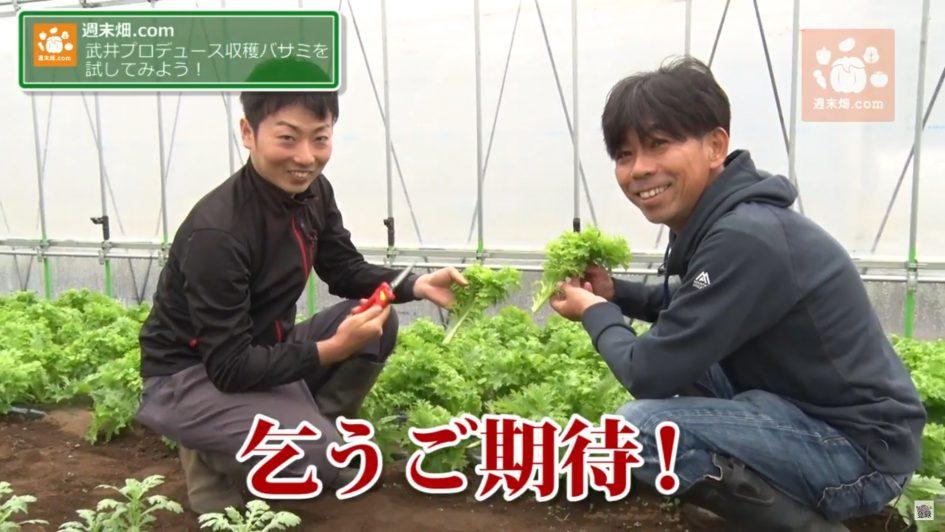 タケイファームプロデュースの収穫バサミについて