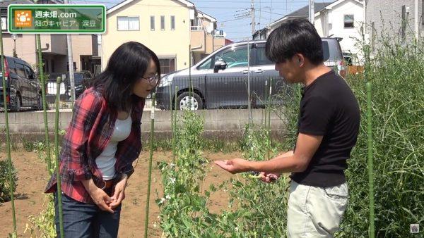 畑のキャビア、涙豆