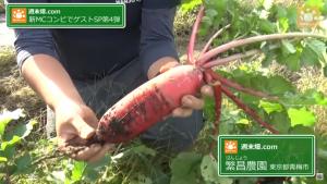繁昌農園のカラフルな野菜
